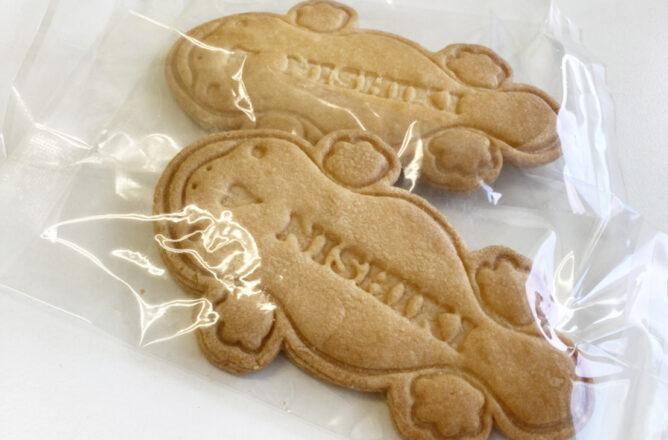 オオサンショウウオ激かわクッキー